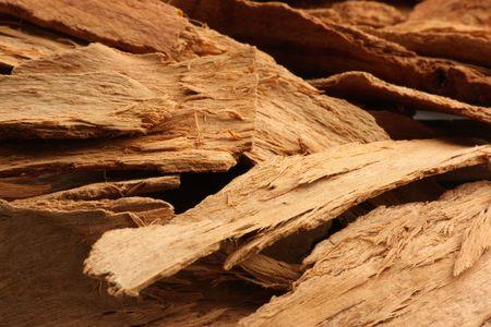 'cinnamon bark': Cinnamon bark