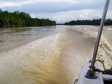 Kinabatangan River Stock Photo