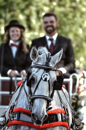 chrome: Fancy Carriage Ride