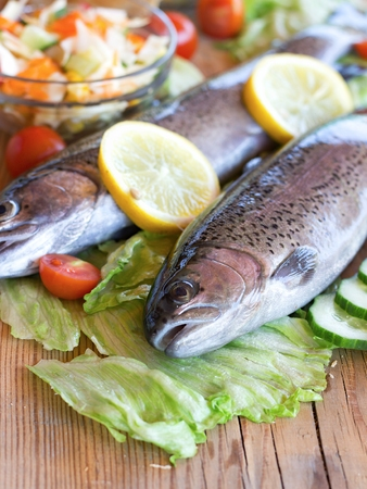 Fresh rainbow trout, vegetable salad, and toast on wooden bowl