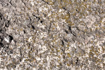 porous brick: masonry stone yellow Crimean coquina with concrete texture