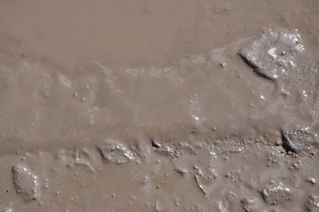 mud pit: The texture of mud. Wet dirt. Puddle