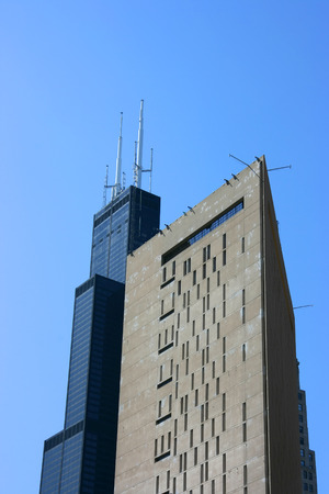 the sears tower: Metropolitan Correctional Center and Sears tower, Chicago Stock Photo
