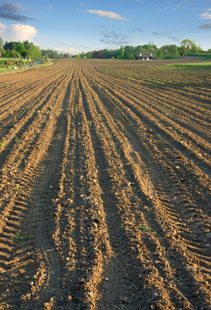Brown soil ploughed field in spring with tractor tracks photo