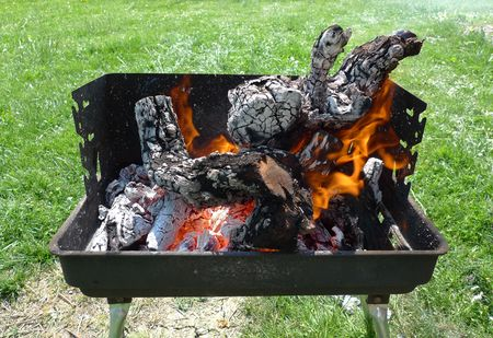 Preparing vine wood embers for the perfect barbecue Stock Photo - 4664836
