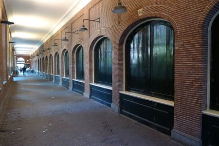 leading light: Old brick hallway near University van Amsterdam, Netherlands