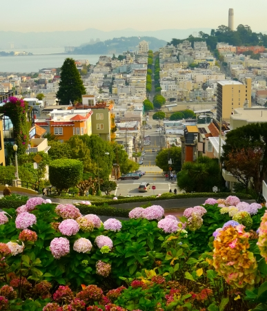 coit tower: Lombard street on Russian hill, San Francisco