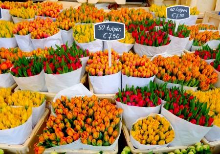 Bunte Tulpen zum Verkauf in Amsterdam Blumenmarkt