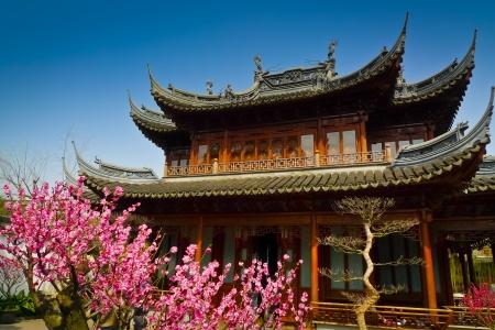 豫園、上海、中国で伝統的なパビリオンの前に花の咲く木