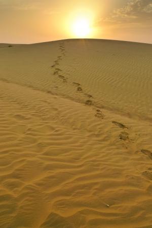 Footsteps aus der Spitze einer Düne bei Sonnenuntergang in der Wüste nahe Jaisalmer, Rajasthan, Indien