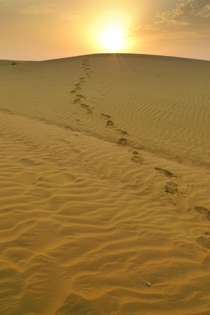 Footsteps coming from the top of a dune at sunset in the desert near Jaisalmer, Rajasthan, India photo