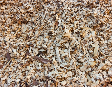 Detail of a woodchips pile in a biomass power plant Stock Photo - 18096288