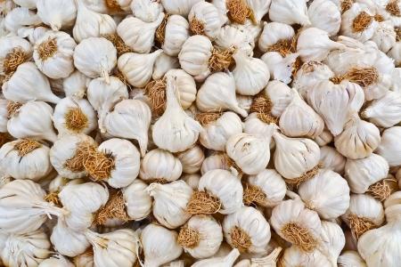 garlic clove: A bunch of garlic bulbs in a street market in Jodhpur, Rajasthan, India