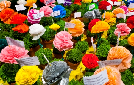 Popular saints festival in Lisbon, Portugal  Traditional Manjerico, little potted plants of newly sprouted Basil are given as gifts during the month of June  Colorful paper-mache flowers are placed into pots alongside one of the many popular verses about  Stock Photo - 18329505