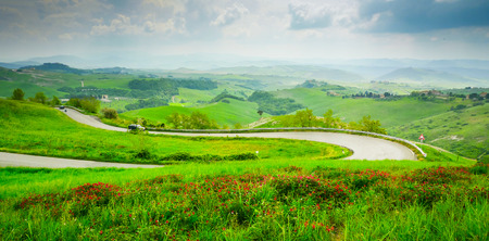 Hill covered by red flowers overlooking the road climbing to Volterra, Tuscany, Italy Standard-Bild