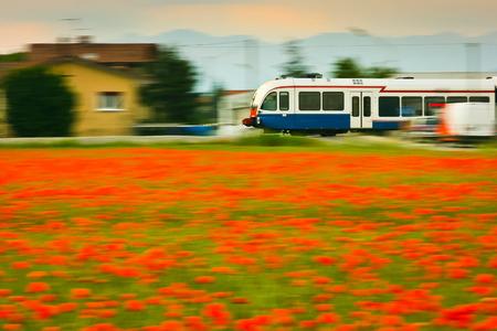 Zug-und Mohnblumen-Feld, Bewegungsunschärfe bei Sonnenuntergang, Udine, Friaul, Italien Editorial