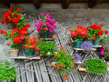 Colorful flowers hanging on haystack sticks in Sauris, Carnia, Friuli, Italy, Europe