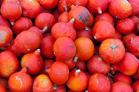 A bunch of small red pumpkins for sale in Innsbruck, Tirol, Austria