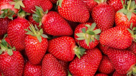 Background from freshly harvested strawberries, directly above. 写真素材
