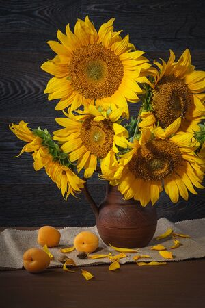 Still life with sunflowers in a clay pot against a wooden wall.