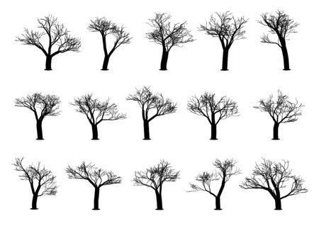 Set of tree silhouettes on a white background.