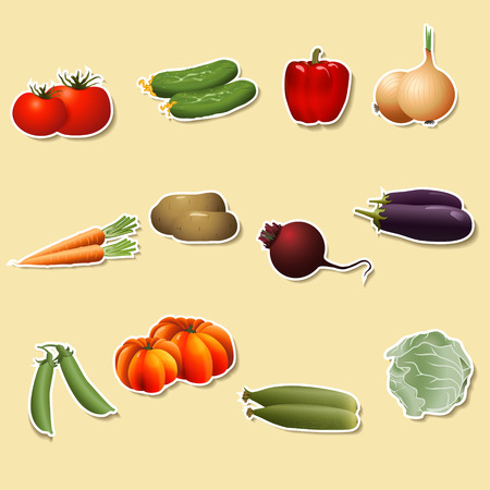 vegetables on paper:  corn, potatoes, tomatoes, carrots, peppers  with shadow Vector