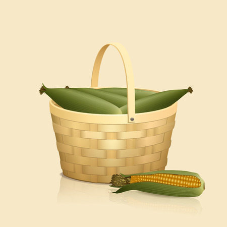 bast basket: straw basket with handle and corn on a light background