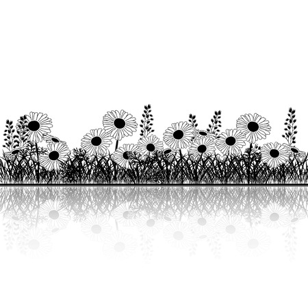 chamomile: silhouette lawn with flowers chamomile and grass on a white background