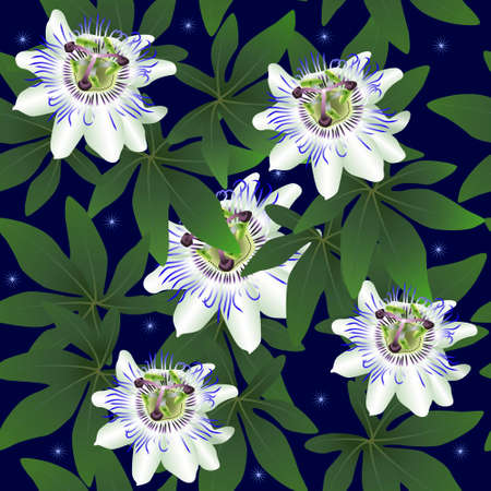 seamless pattern with passionflower on a blue background