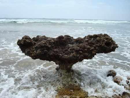 ベイビー ビーチとコロラド州、アルバ、カリブ海のクジラの尾のように見える岩を侵食 写真素材