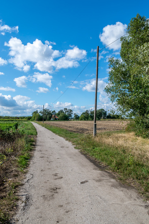 country roads: Small dirt road in village between fields Stock Photo