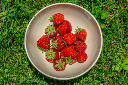 Bowl of strawberries on grass background