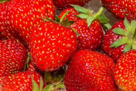 Many fresh strawberries macro Stock Photo