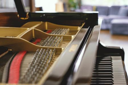 Grand piano Banco de Imagens