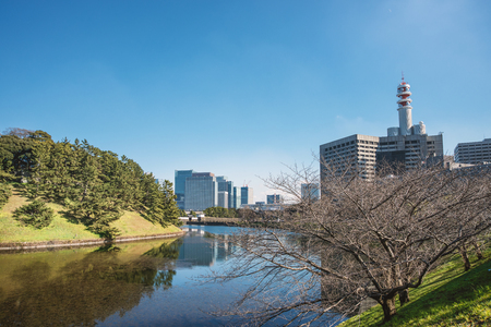 castle district: Scenery of Edo Castle and the administrative district