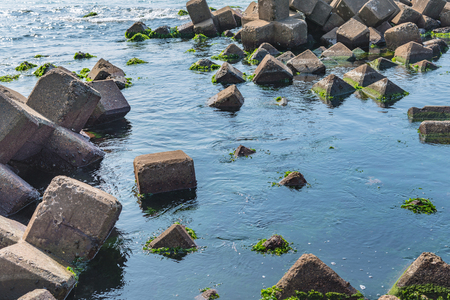 precast: Seaside seaweed and precast concrete armor unit