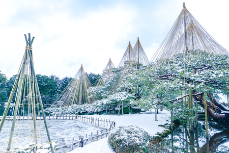 Winter scene of Kenrokuen Garden
