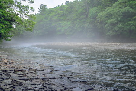 Scenery of the Isuzugawa river in the morning mist