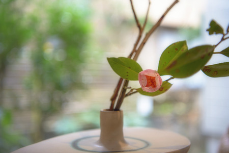 Japanese flower arrangement of the pink camellia Stock Photo