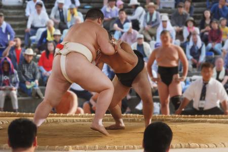 wrestle: Student sumo wrestler Editorial