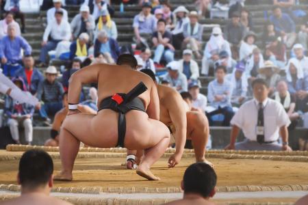 wrestle: Student sumo wrestler Stock Photo