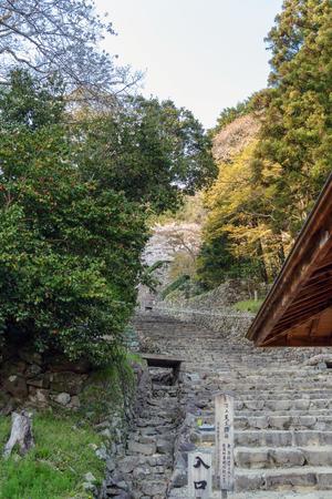 Scenery of the Azuchi castle ruins Editorial