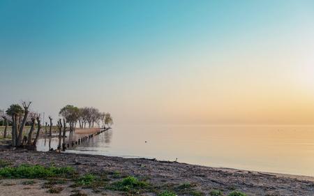 morning blue hour: Sunset scenery of lakeside