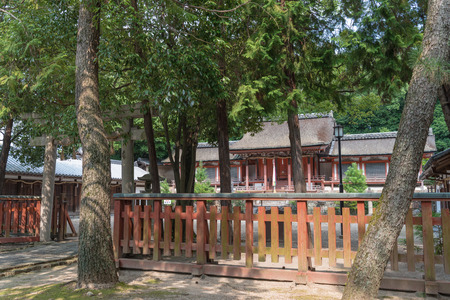 Yasugaoka at the Hachiman-gu Shrine (designated as an Important Cultural Property)