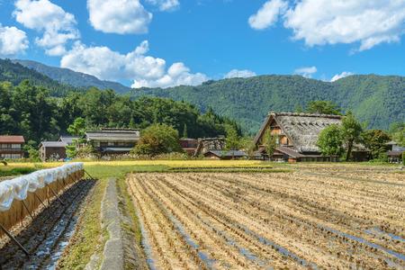 In rural scenery of Shirakawago Gifu, Japan Banque d'images