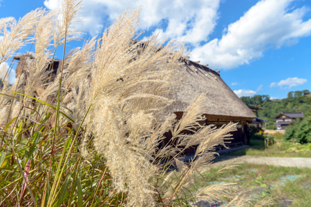 Autumn scenery of the World Heritage site Shirakawago, Japan Stock Photo