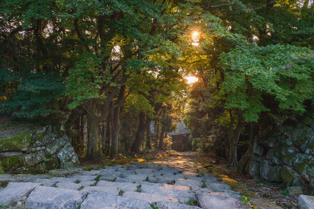 The setting sun which flows into the Azuchi castle ruins