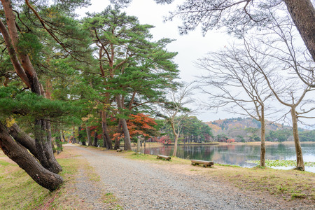 Autumnal scenery of Lakeside Nanko park in Shirakawa, Japan