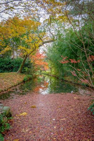 Autumn scenery of the Ritsurin park garden