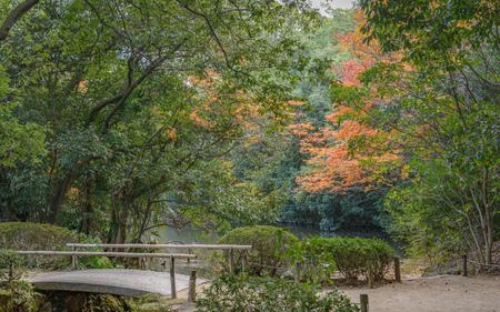Autumn scenery of the Japanese garden Stok Fotoğraf